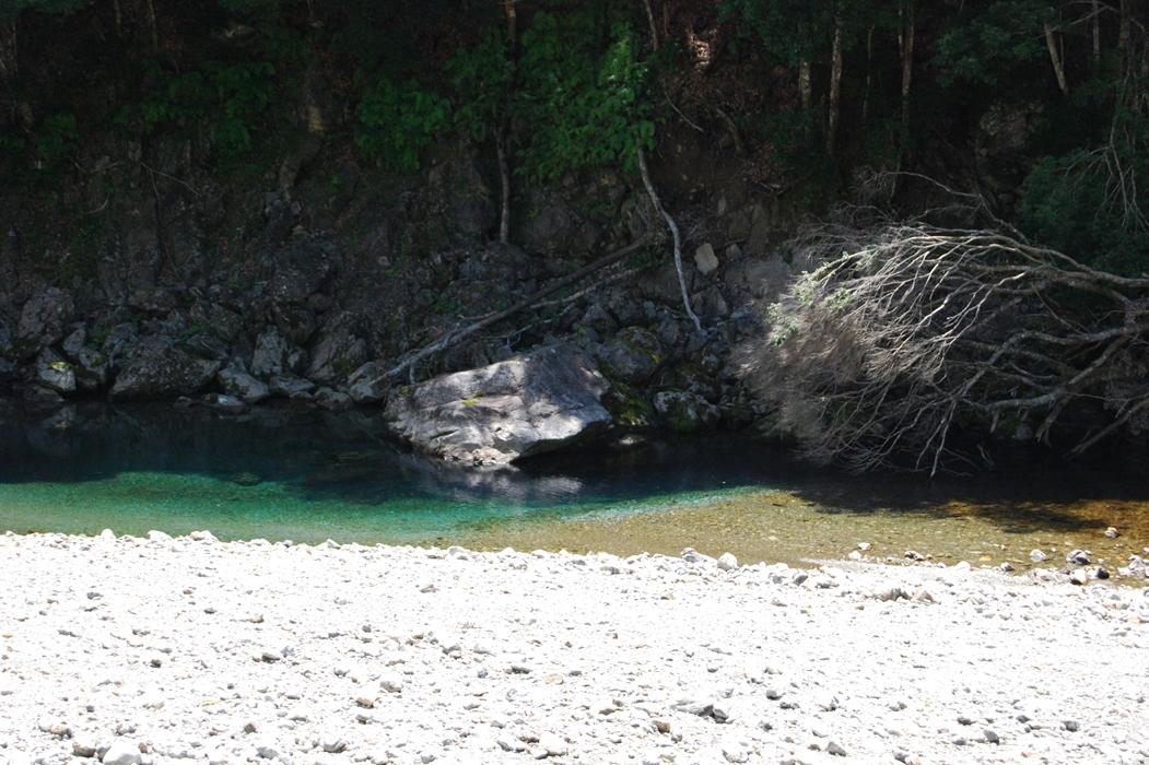 宮川の風景