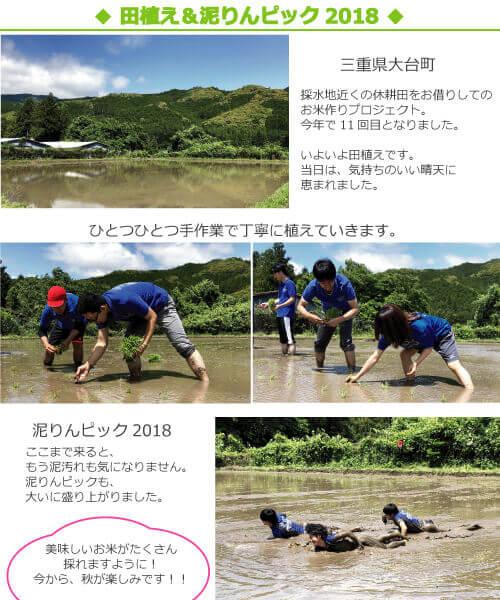 2018田植えの様子