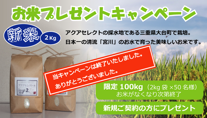 RicePresent_top