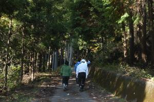 19林道を歩いて.JPG